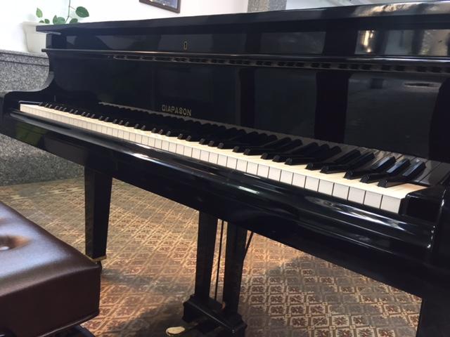 Piano Diapason Hamamatsu No.170