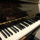 ATLAS NA305