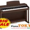 Piano điện Casio AP420
