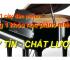 Piano cơ- Piano điện nên mua loại nào?