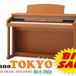 Piano điện Kawai CN21